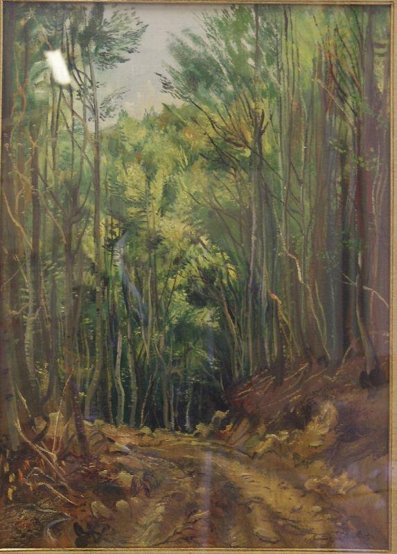 Romano Stefanelli  PAESAGGIO BOSCHIVO  olio su compensato, cm 50x70
