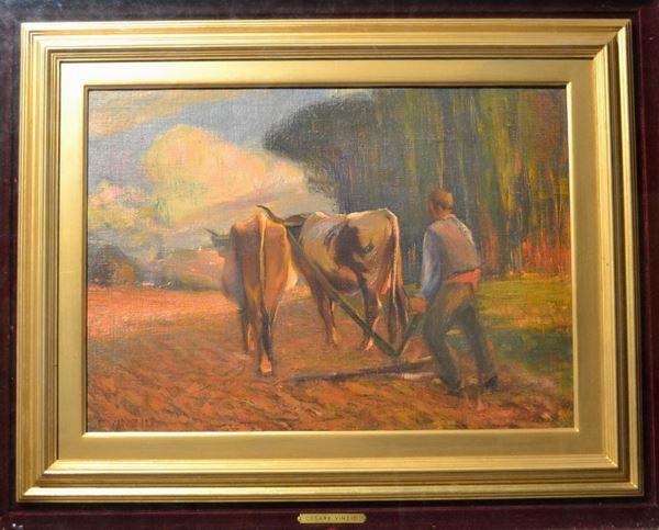Giulio Cesare Vinzio (Livorno 1881 - Milano 1940)  L'ARATURA olio su tela, cm 37x52 firmato