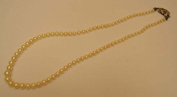 Collana di perle coltivate, con calibro a scalare, con fermazza di foggia antica di oro bianco con piccolo rubino