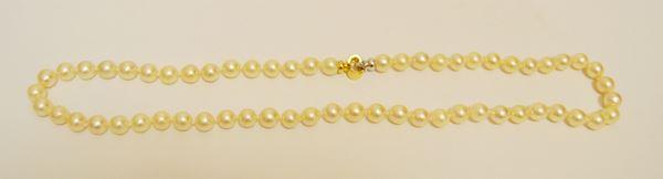 Collana ad un filo di sessanta perle, diam. mm 8, chiusura in oro giallo e bianco