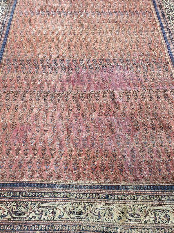 Tappeto persiano, inizi sec. XX,
